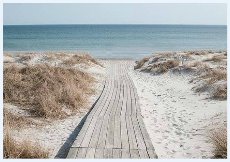 brzeg morza, plaża, drewniany pomost